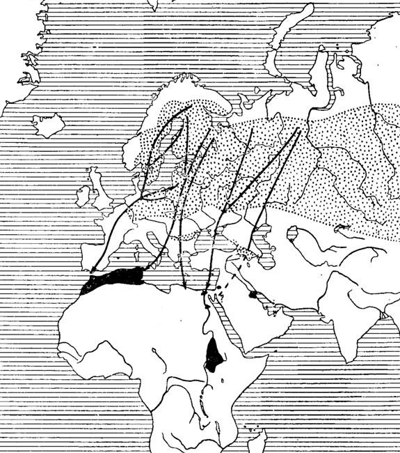 Карта перелетов журавля в