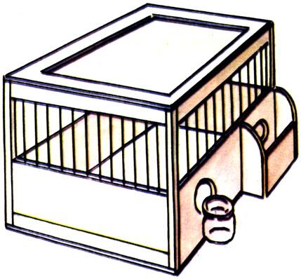 Клетка для жаворонка своими руками 33