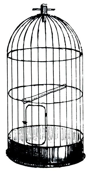 Клетка для попугая раскраска 86